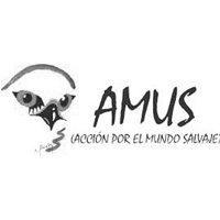 amus-camisetas-personalizadas-bichobichejo | camisetasecologicas.es